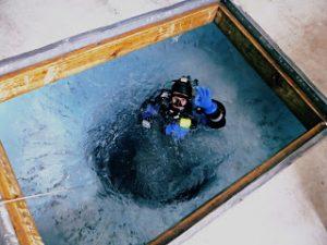 diving lauren