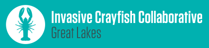 Invasive Crayfish Collaborative Thumbnail