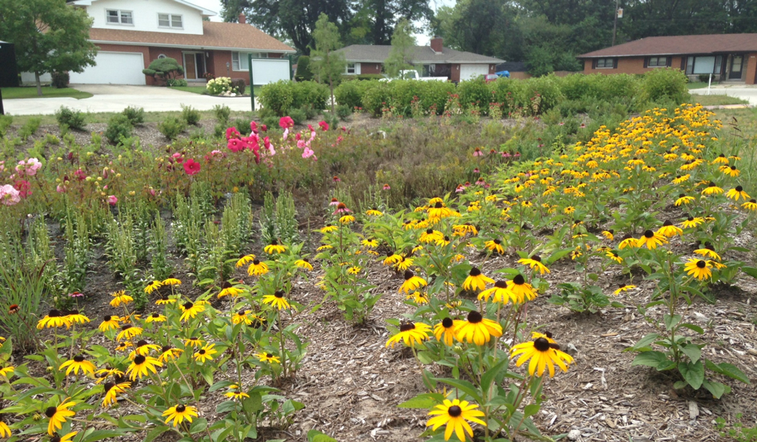 Nationwide rain garden app now includes Indiana plants ... on rain garden design for homeowners, rain garden design ideas, rain garden design software, native garden design diagrams, rain garden design templates, rain garden design calculations, rain garden planting design for maryland, landscaping diagrams, rain barrel diagram, sustainable architecture design diagrams, rain garden design sketch, rain architecture diagrams, rain water retention plans, catch rain diagrams, rain shadow, stormwater management diagrams,