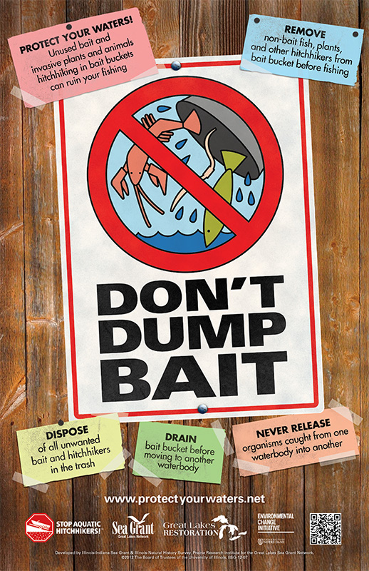 Don't Dump Bait Thumbnail