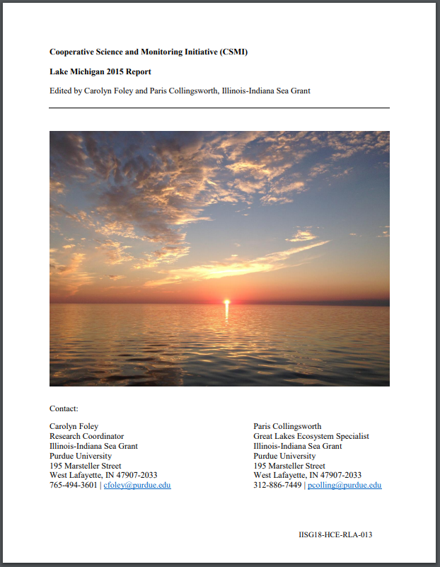 Cooperative Science and Monitoring Initiative (CSMI) Lake Michigan 2015 Report Thumbnail