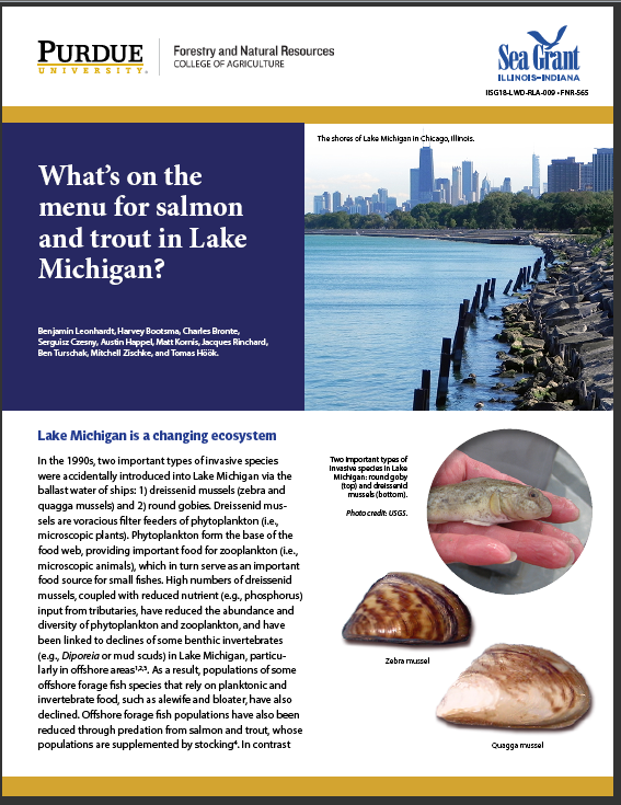 What's on the Menu for Salmon and Trout in Lake Michigan? Thumbnail