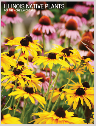Illinois Native Plants for the Home Landscape Thumbnail
