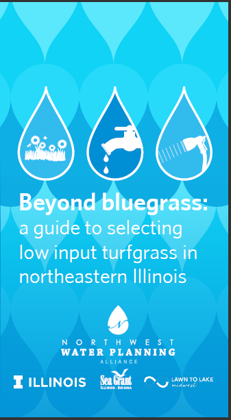 Beyond bluegrass: a guide to selecting low input turfgrass in northeastern Illinois Thumbnail
