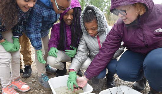 students gather around a tadpole, one of them is reaching out her hand to touch it
