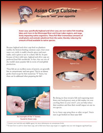"Asian Carp Cuisine: Recipes to ""wet"" your appetite Thumbnail"