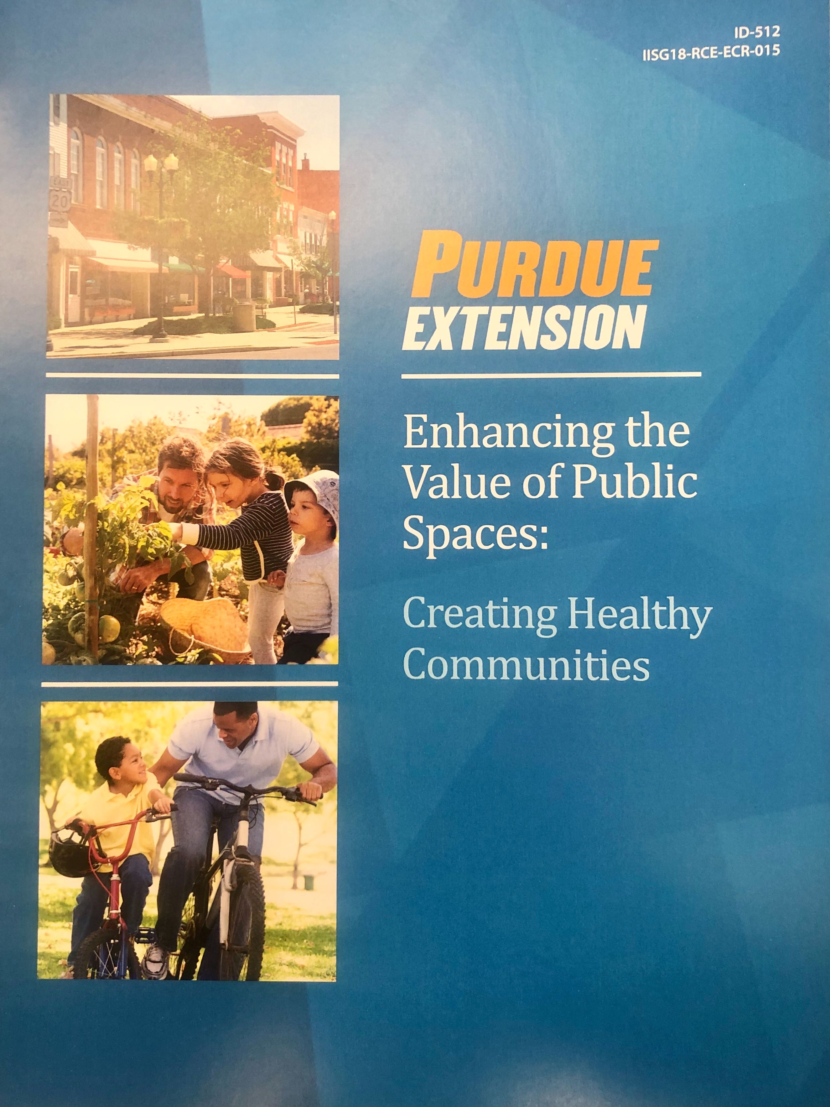 Enhancing the Value of Public Spaces: Creating Healthy Communities Thumbnail