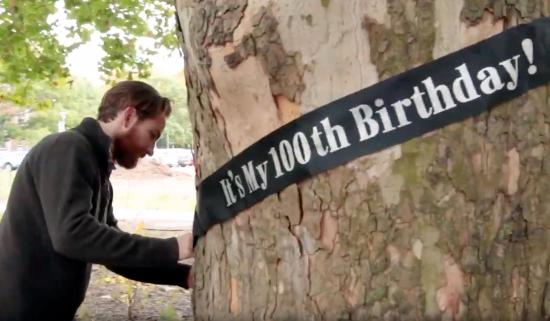 "man wraps ""It's my 100th birthday!"" sash around large tree"