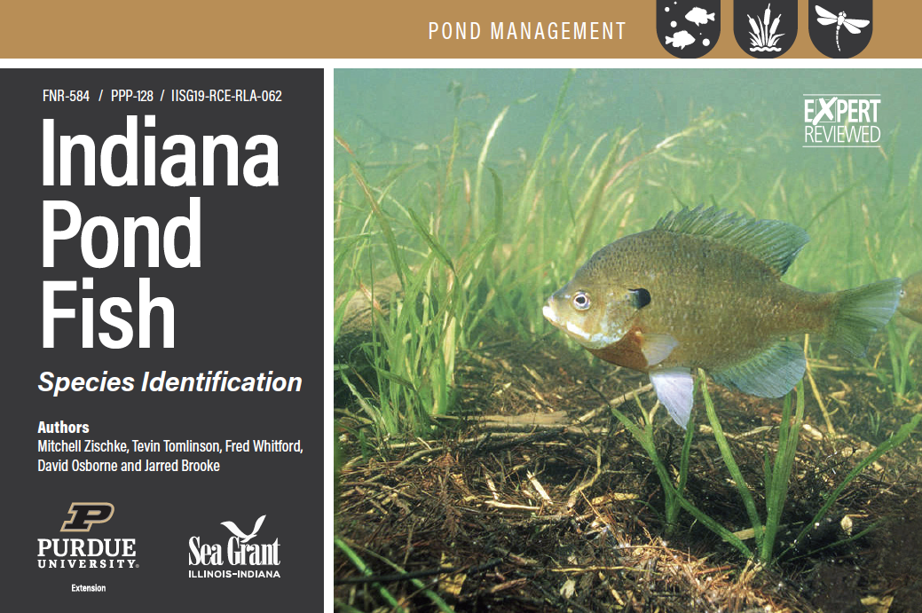 Indiana Pond Fish, Species Identification Card Set Thumbnail