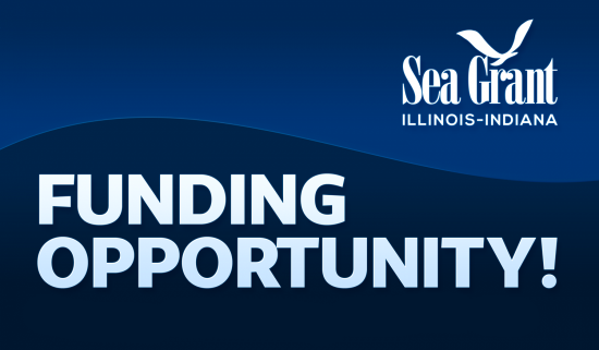"""funding opportunity"" banner with IISG logo"