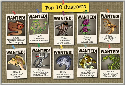"""Top 10 Suspects"" board with ""wanted"" posters of several aquatic invasive species"