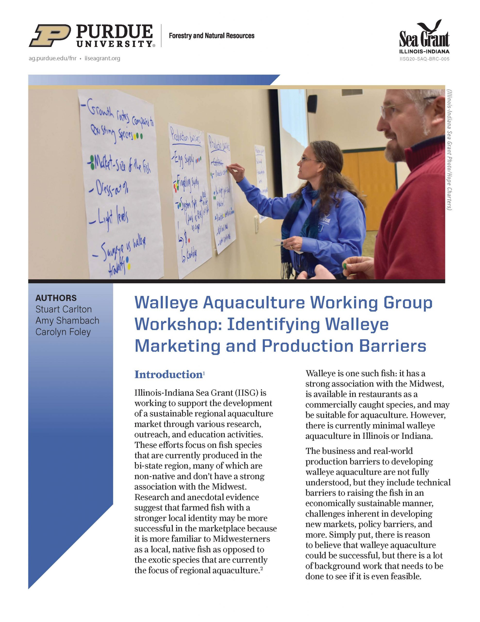 Walleye Aquaculture Working Group Workshop: Identifying Walleye Marketing and Production Barriers Thumbnail