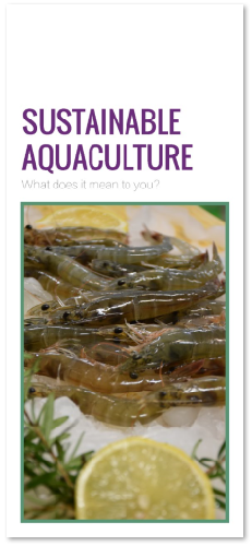Sustainable Aquaculture: What Does It Mean to You? Thumbnail
