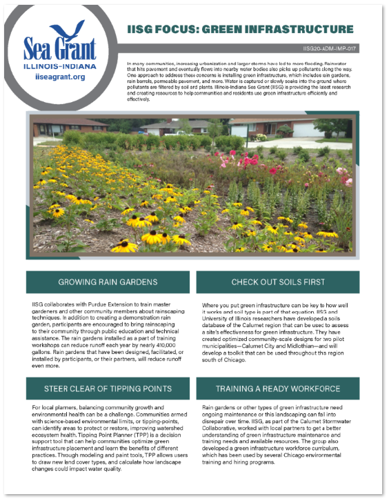 IISG Focus: Green Infrastructure Thumbnail