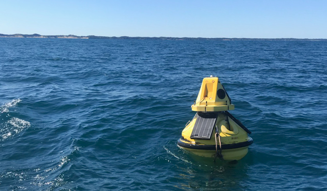 damaged yellow buoy floating in the waters of Lake Michigan