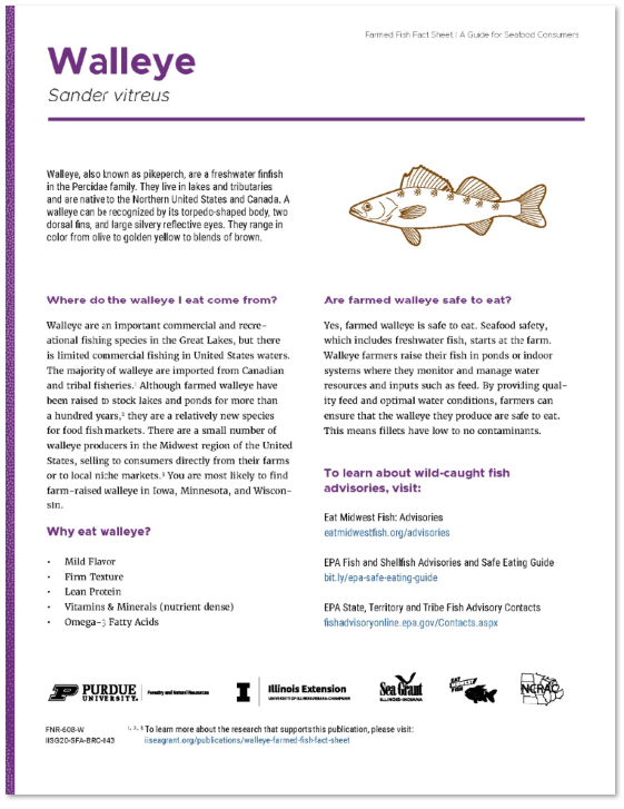 Walleye Farmed Fish Fact Sheet: A Guide for Seafood Consumers Thumbnail