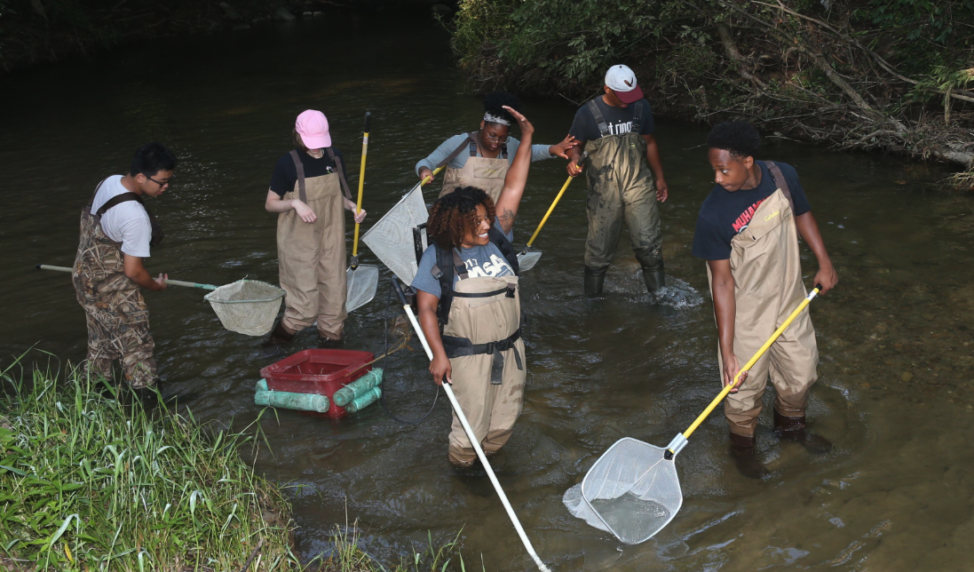 Megan Gunn and students stand in stream wearing waders and using nets for sampling
