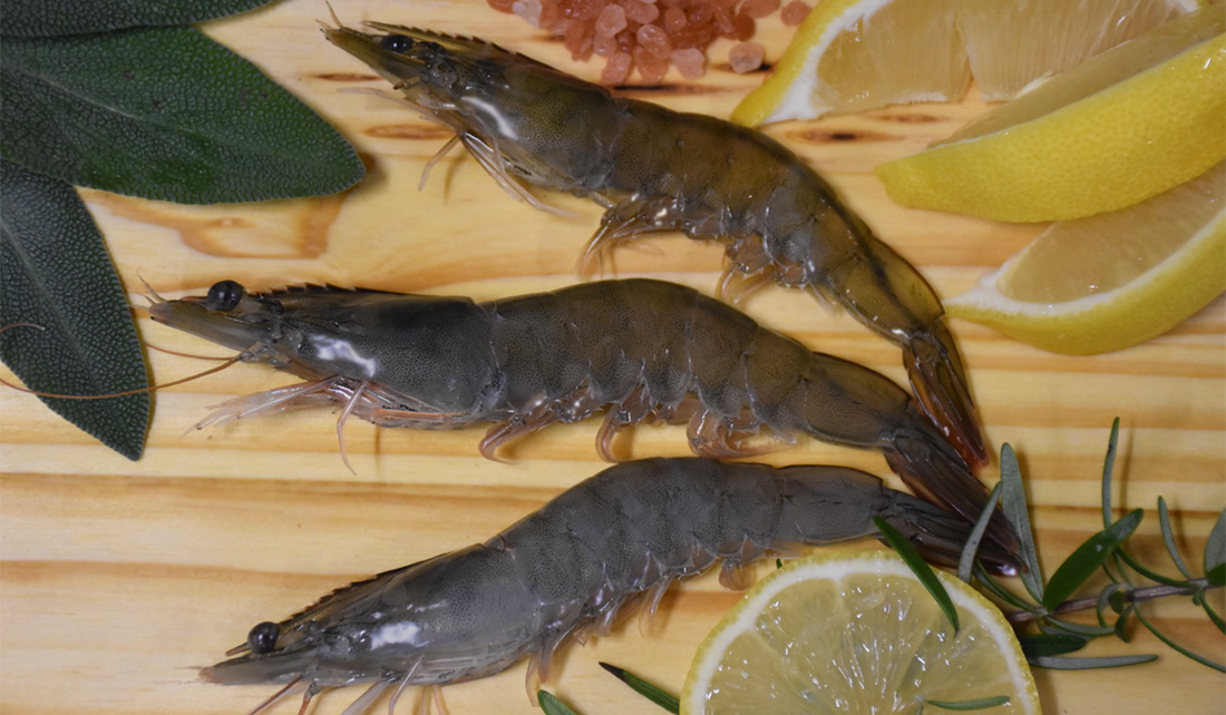 fresh shrimp laid out on a cutting board with lemon, herbs, and salt