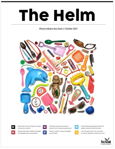 The Helm (2021) Thumbnail